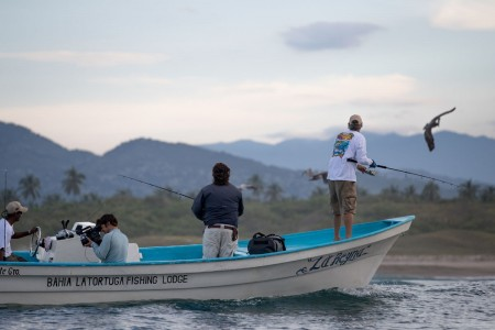 carter-andrews-fish-mexico-02