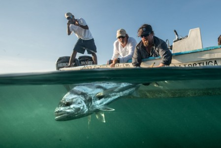carter-andrews-fish-mexico-15